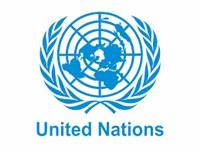 ООН (организация объединенных наций)